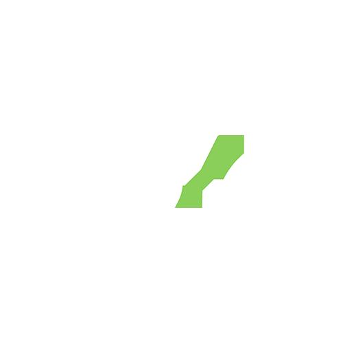 Custom Content cricket