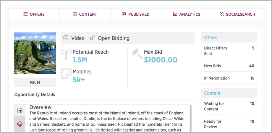 Open Bidding Programmatic Matching