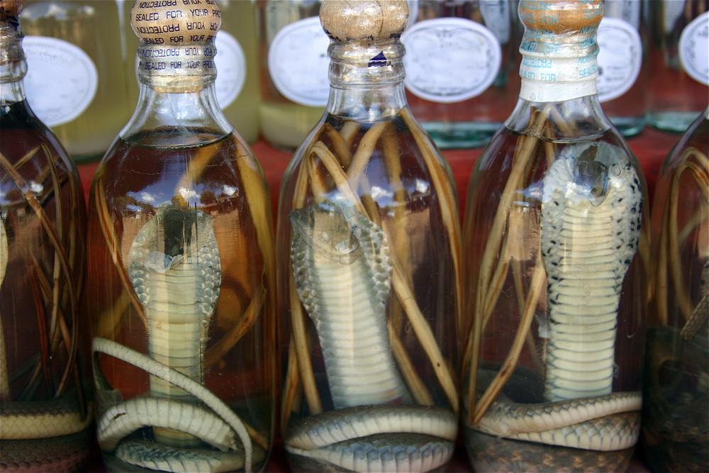 Snake Wine