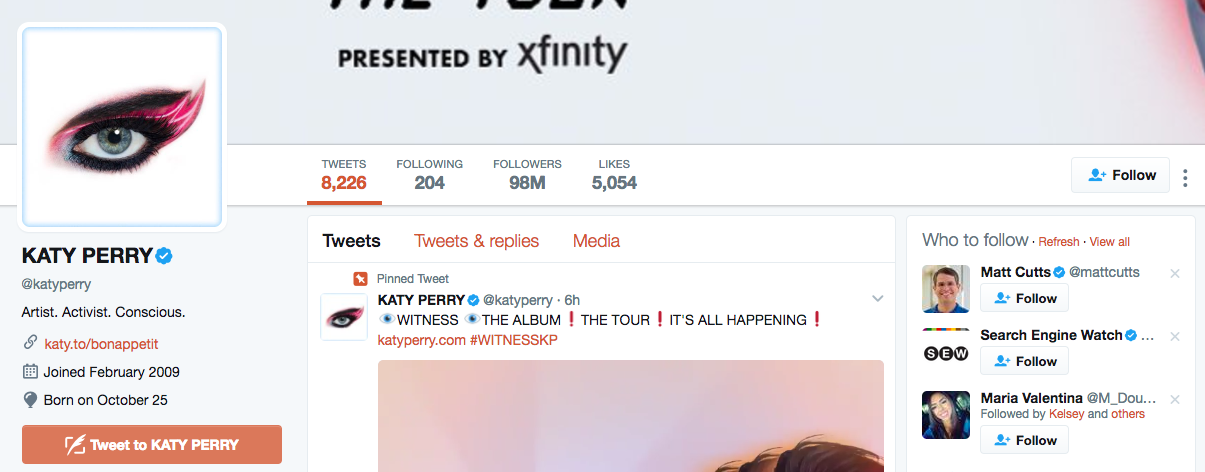 Katy Perry Top Twitter Influencer