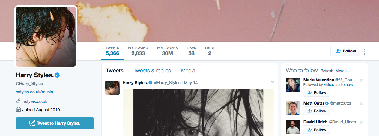 Harry Styles Top Twitter Influencer