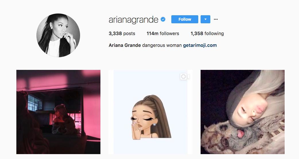Ariana Grande Top Instagram Influencers