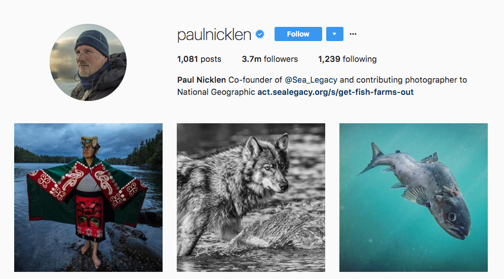 Paul Nicklen Top Photography Influencer