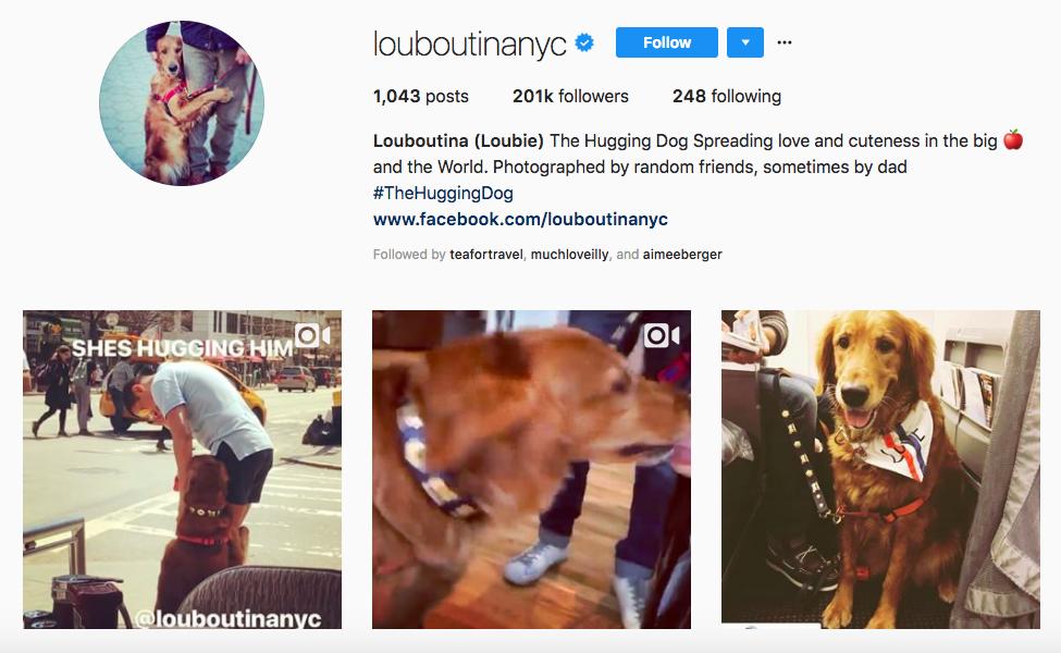 Louboutina top pet influencers