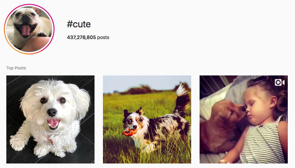 #cute Trending Instagram Hashtags