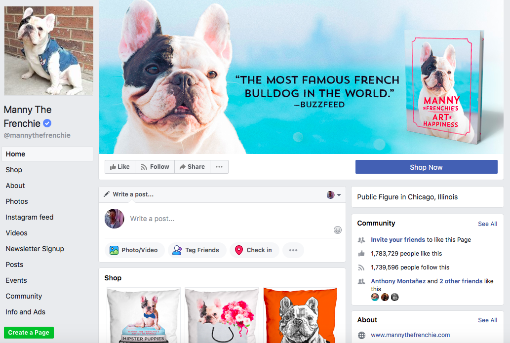 Manny the Frenchie top Chicago Influencers